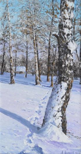 birch, landscape