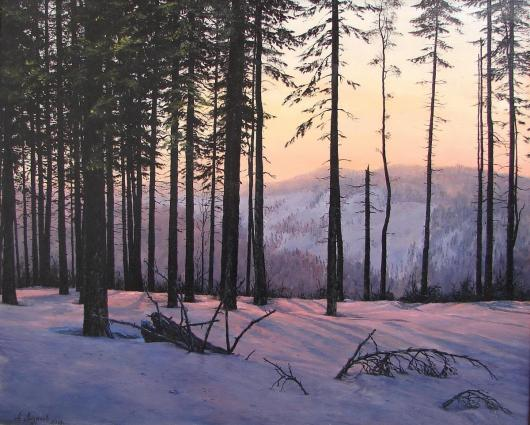 winter landscape, the Carpathians, shipboard pine