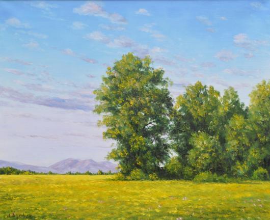 лето, картина, горы, поле