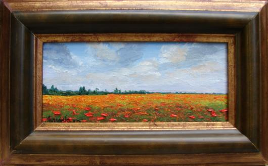 landscape, field, poppies