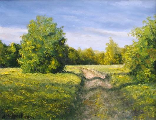 summer, landscape
