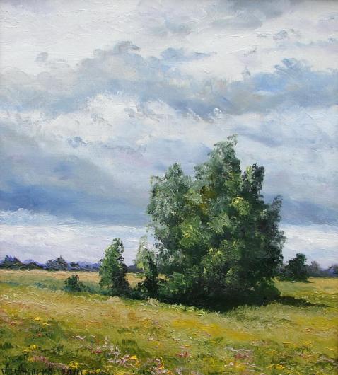 summer, rain, landscape