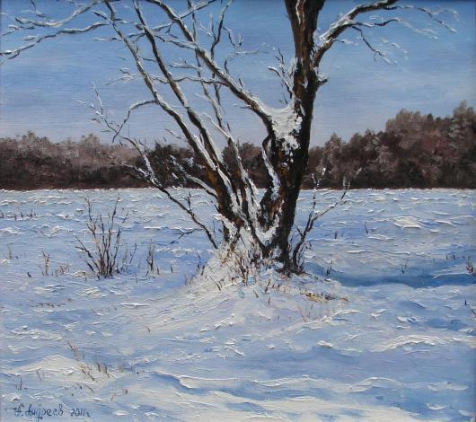 winter, landscape, snowstorm