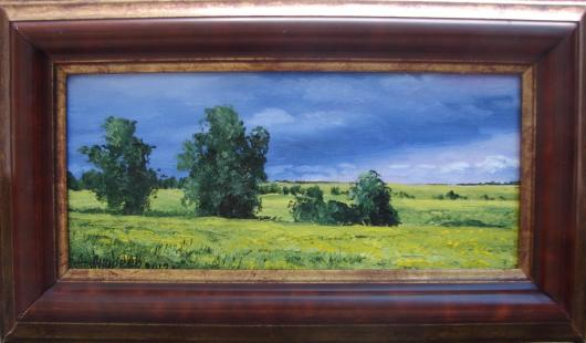 landscape, Steppe