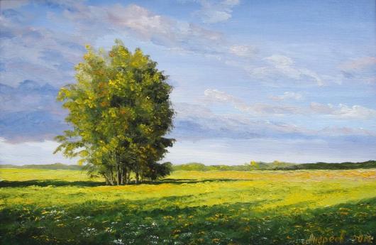 summer,  sun, landscape