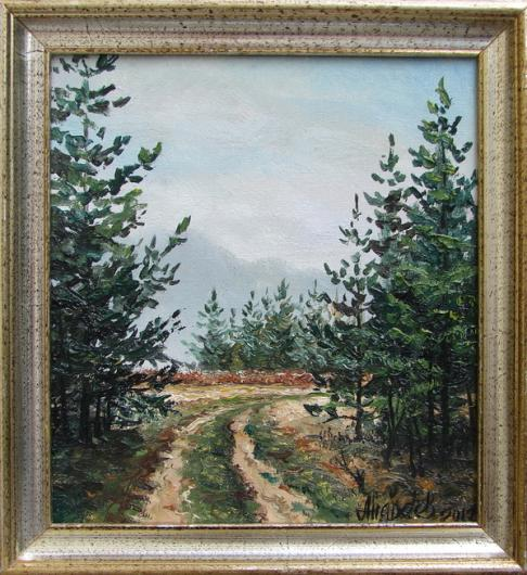 Morning,  pine forest, landscape