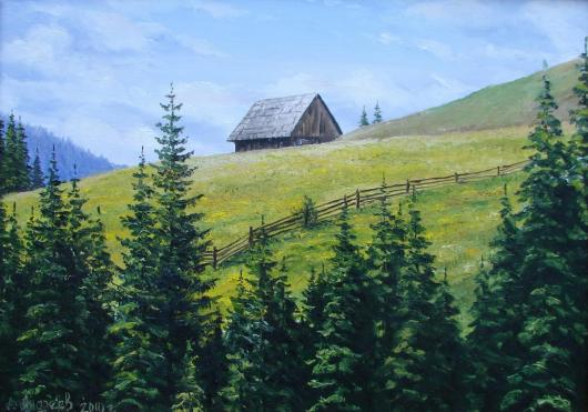 In Carpathians, landscape